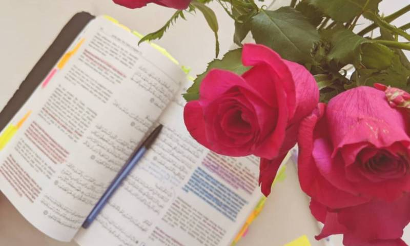 Friday Qur'an Reflections: the Qur'an Unifies Us