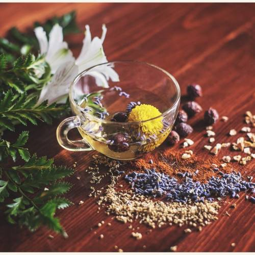 Natural Ways to Boost Your Immune System: Advice From A Herbal Practitioner