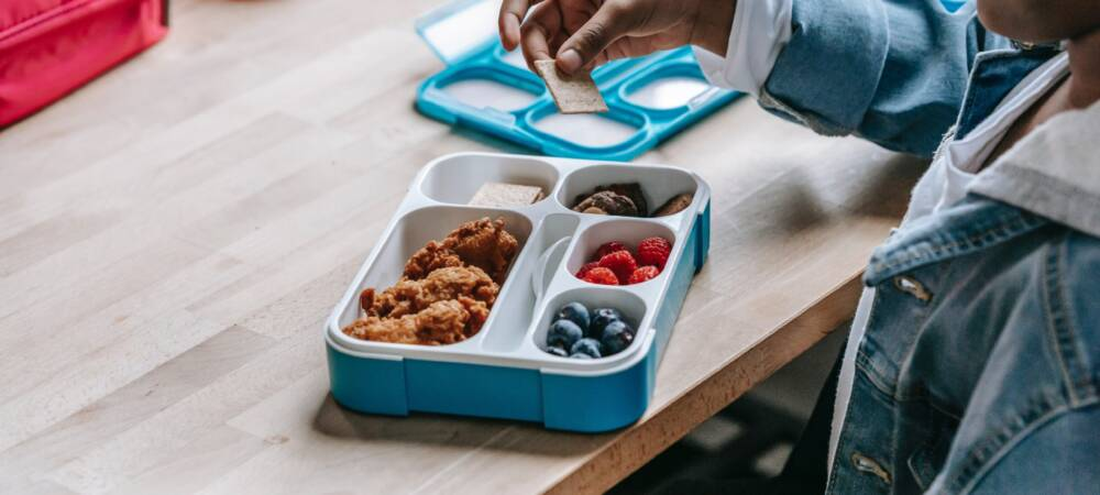 Free School Meals: Government Failure in Tackling Social Issues